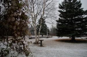Première neige. Photo: Daniel Michaud
